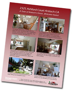 High-Quality Property Information Flyer-2