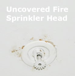 Uncovered Home Fire Sprinkler System Head