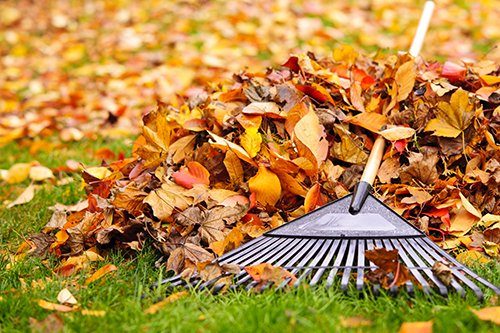 Prep your home for fall by raking the leaves